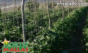 envarado de cultivos en campo